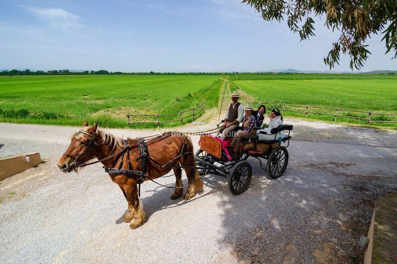 Arrivo in carrozza
