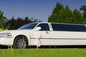 Live a Dream Limousine
