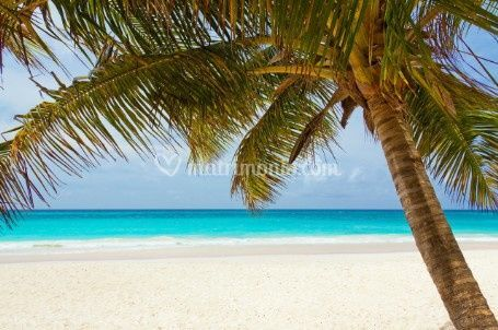 Correos Travel Vacanze