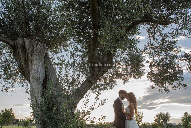 Gianna del Monaco Wedding Photographer