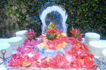 Ostrica di ghiaccio di Residenza Castelverde