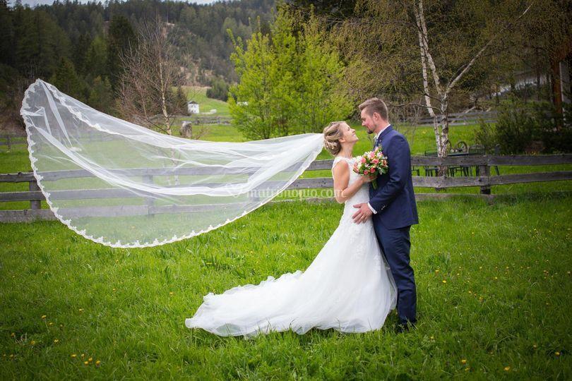Trintinaglia Wedding Photo