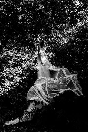 Foto Conca di Davide Pelloli