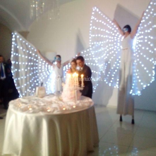 Farfalle Luminose Show