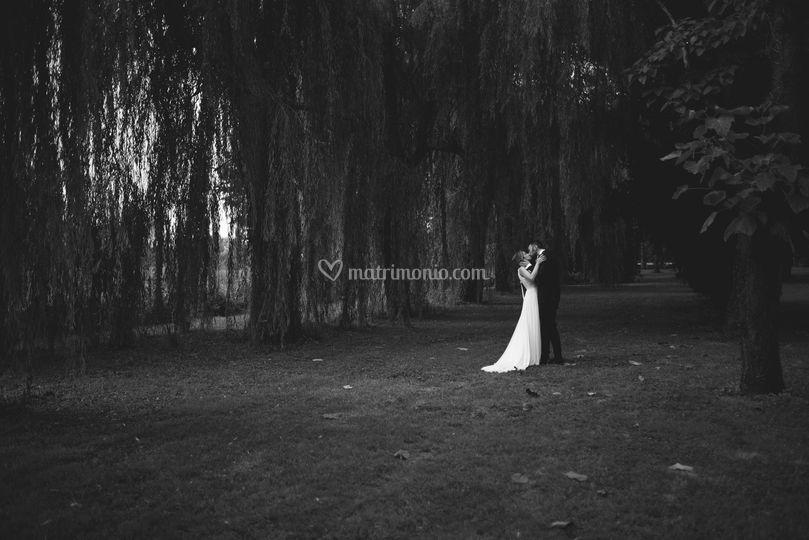 Nicole De Grandis Photography