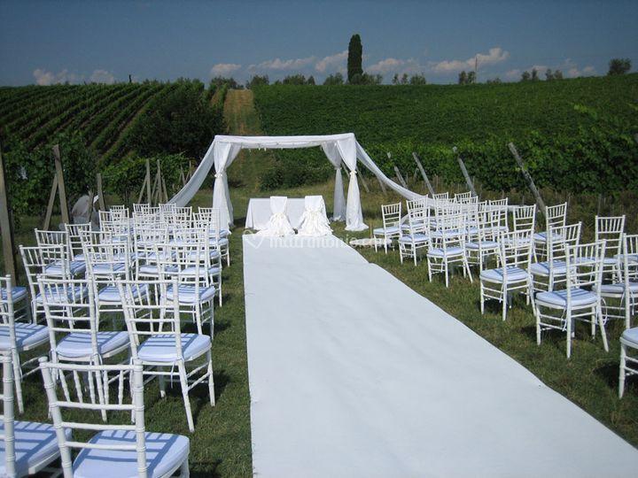 Matrimonio in un vigneto toscano