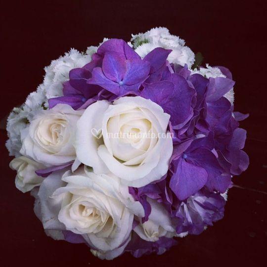 Rose Avalanche E Ortensie : Fiorista in nome della rosa