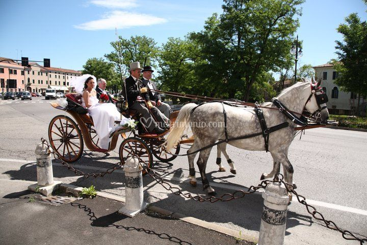 Matrimonio a Dolo (Ve)