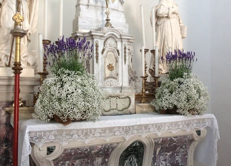 Chiesa con piante aromatiche