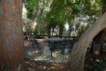 Parco secolare di Villa Musco