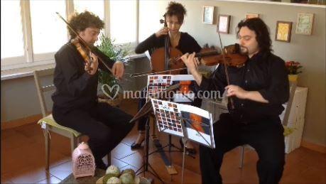 Setticlavio Eventi Trio