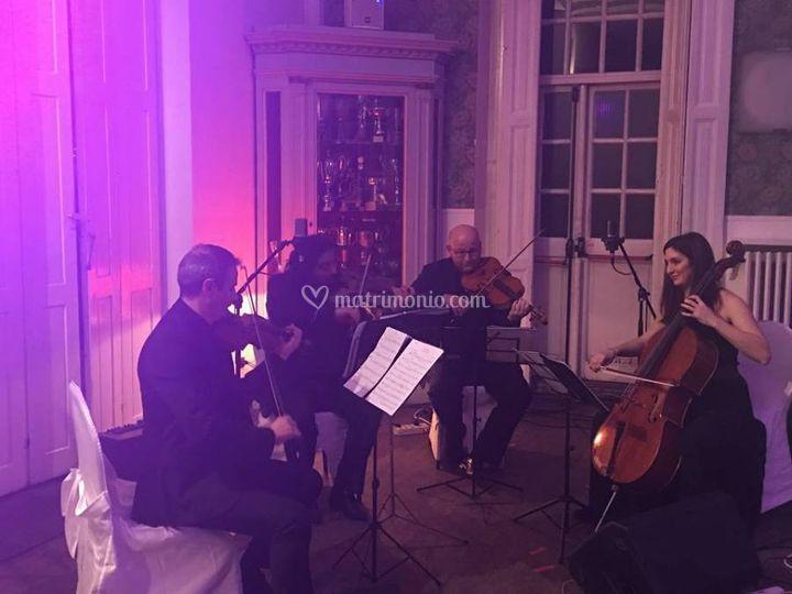 Setticlavio Eventi Quartetto