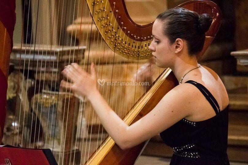Lisa Tarabbia