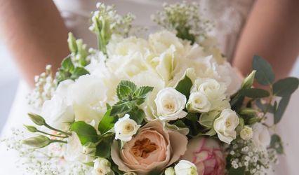 Fleurs D'Ange 2