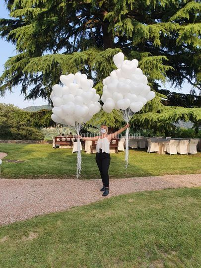 Le feste di Mirtillo Wedding