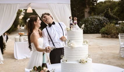 Pinax Wedding 1