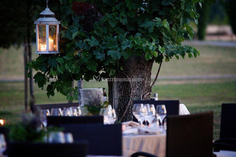 Cenare tra gli ulivi