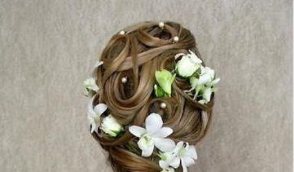 Alkimya Hair Wellness