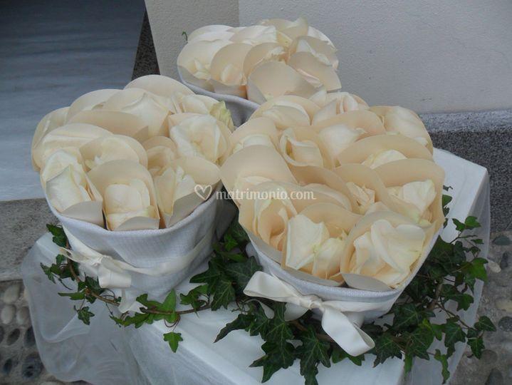 Saccorri con coni petali riso