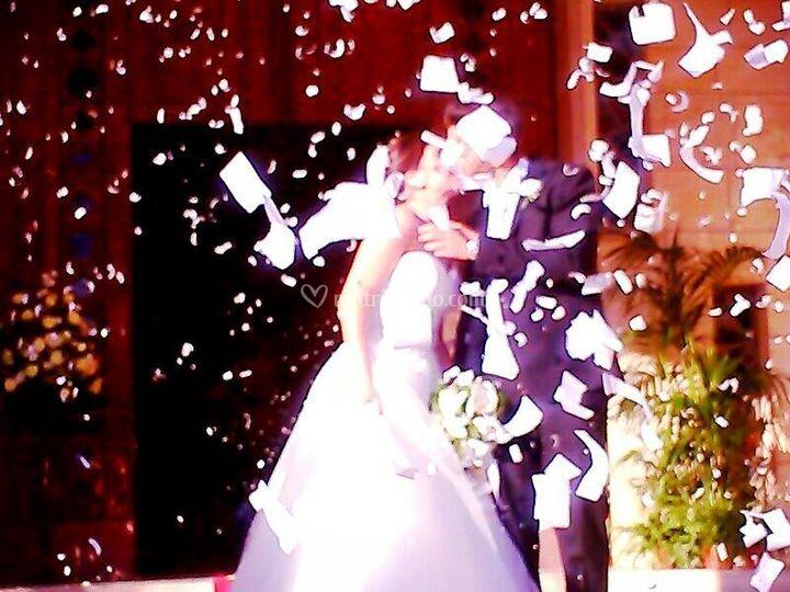 Your Wedding Book