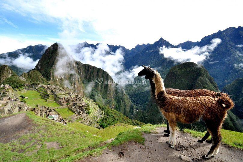 Perù - Sud America