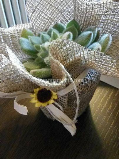 Es. Bomboniere con Succulente