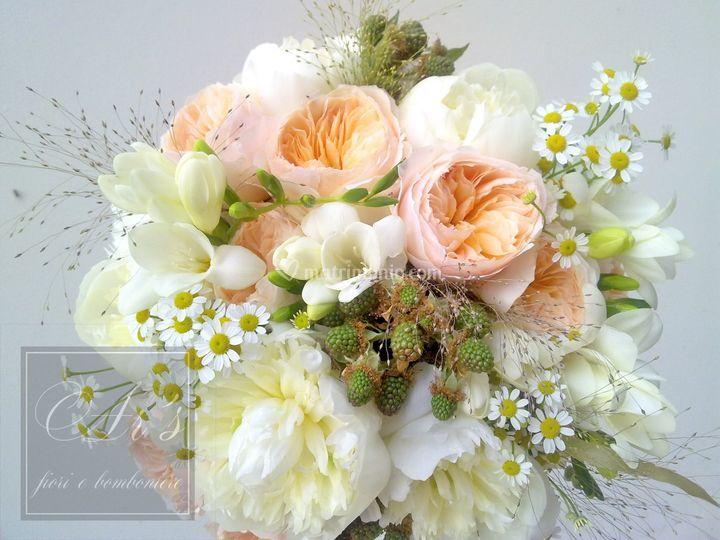 Ar's fiori e bomboniere
