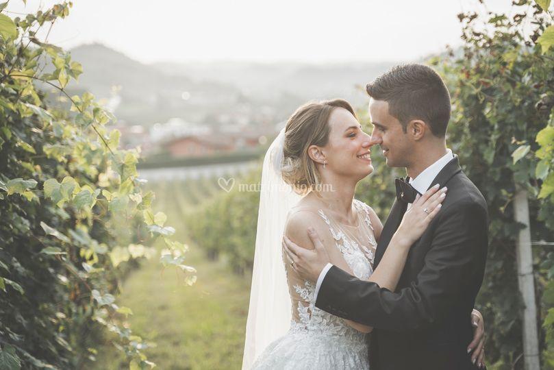 Love in vineyards