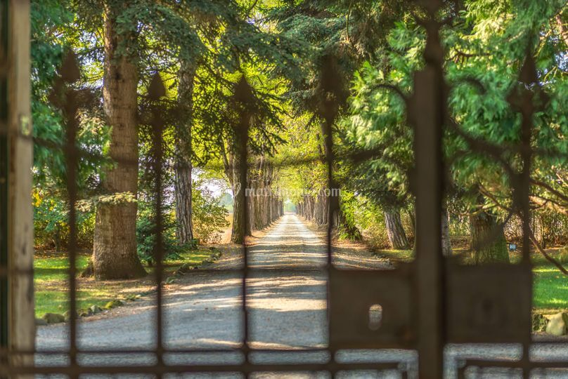 Il viale d'ingresso