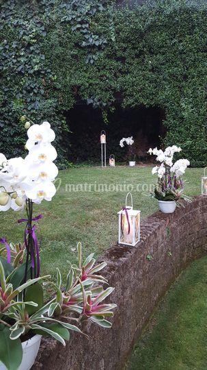 Davide floris fiori eventi for Allestimento giardino