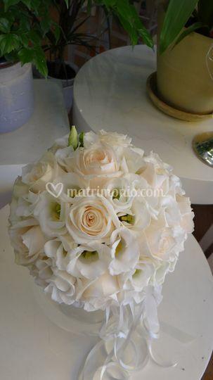 Rose talea e lisiantus bianchi
