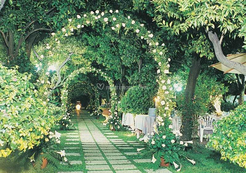 Archi di rose