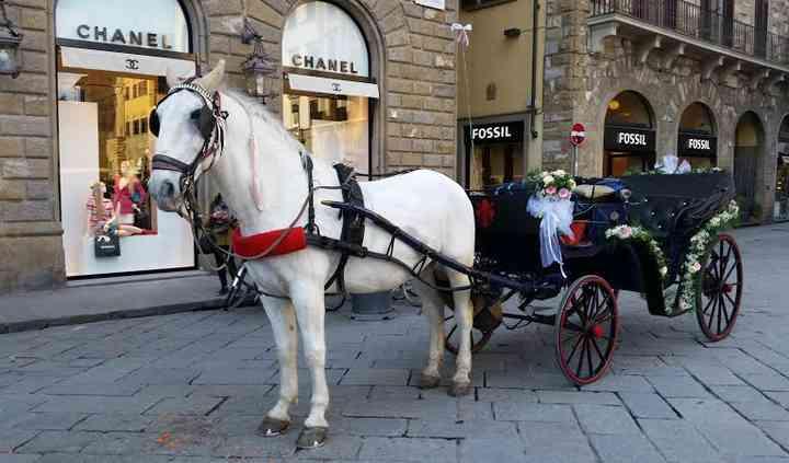 Fiaccheraio di Firenze