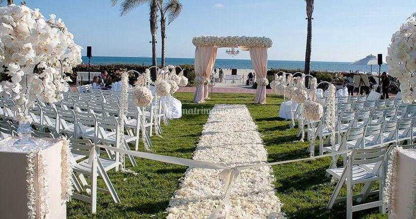 Matrimonio Sulla Spiaggia Campania : Cerimonia sulla spiaggia di vesuvio plant foto