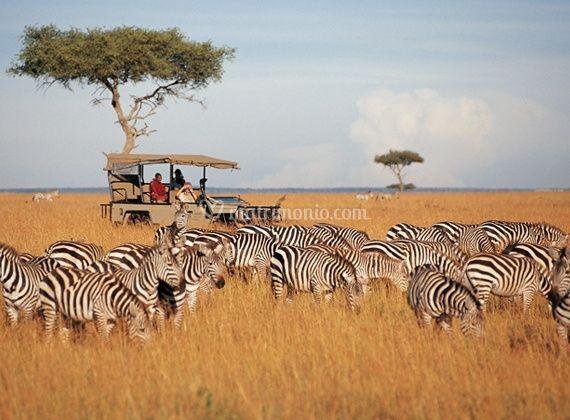 Tasvo Park Kenya