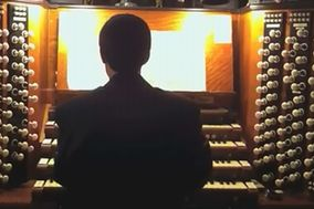 Daniele Organista e Pianista