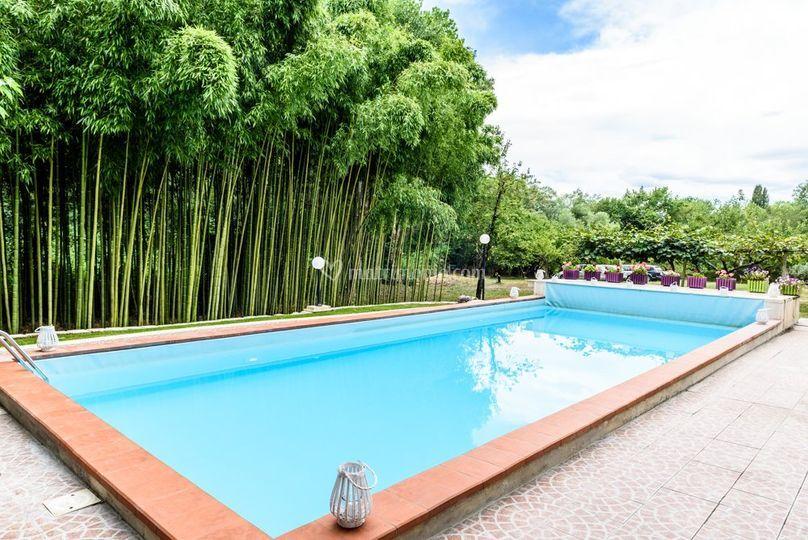Piscina & bamboo