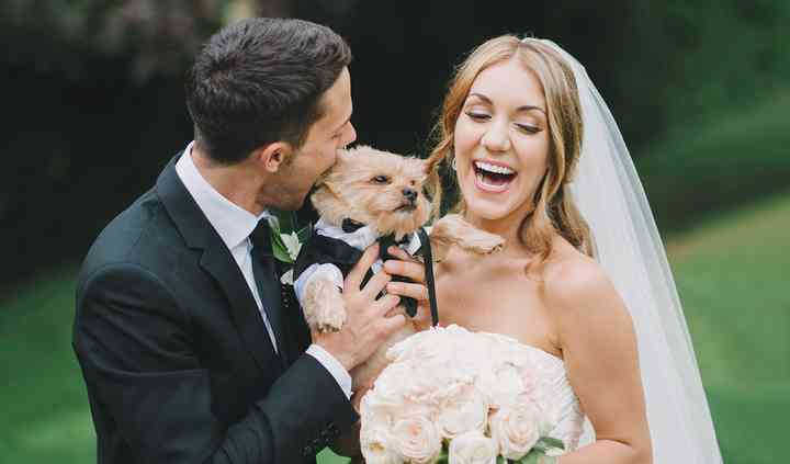 Personal Pet Style Wedding