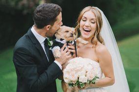 Personal Pet Style Wedding