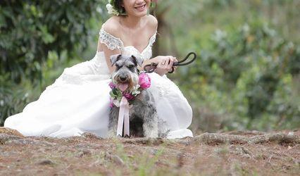 Personal Pet Style Wedding 1