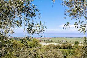 Azienda Agricola Castelmontioni