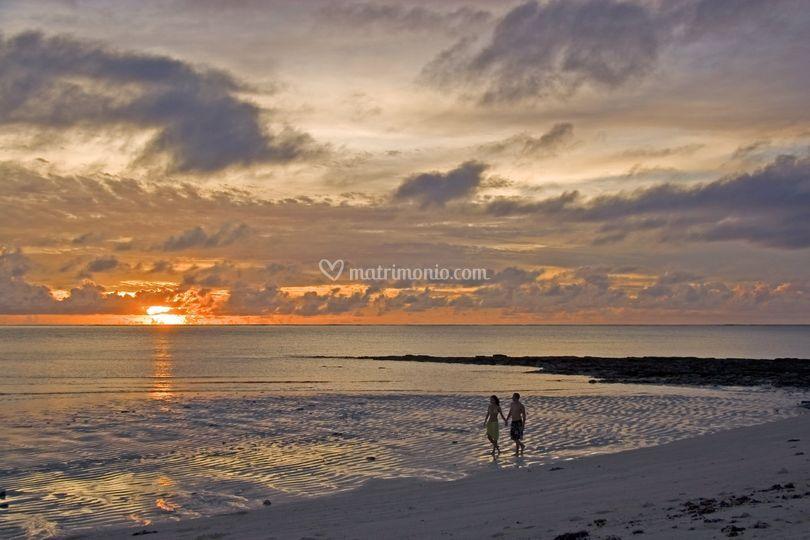 Dreaming on a beach...