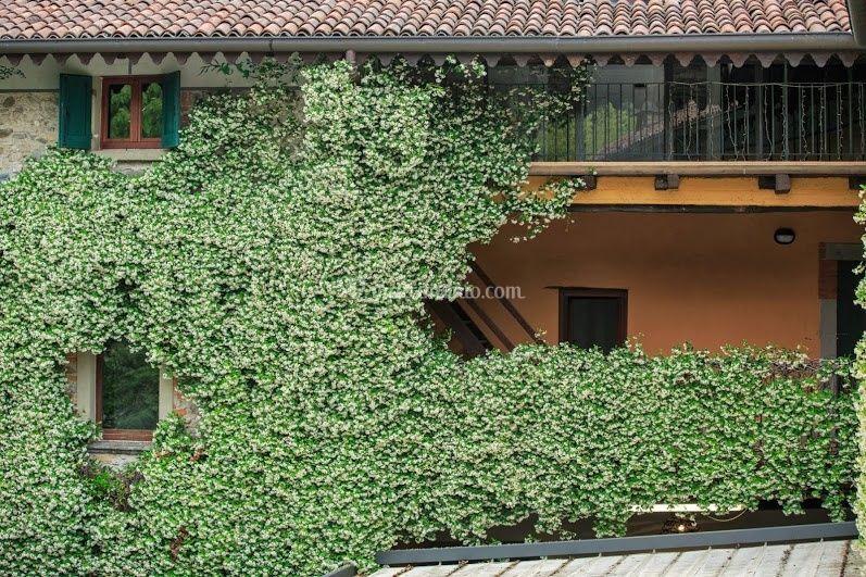 Gelsomino di Villa Teodolinda | Foto 31