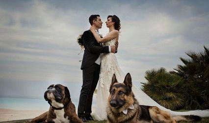 CaniAmo - Wedding Dog Sitter