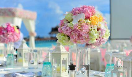 Wedding & Events 1