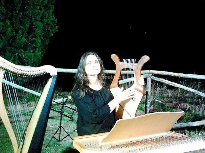 Antichi strumenti a corda