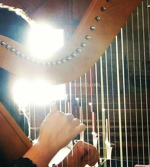 Strings of my heart
