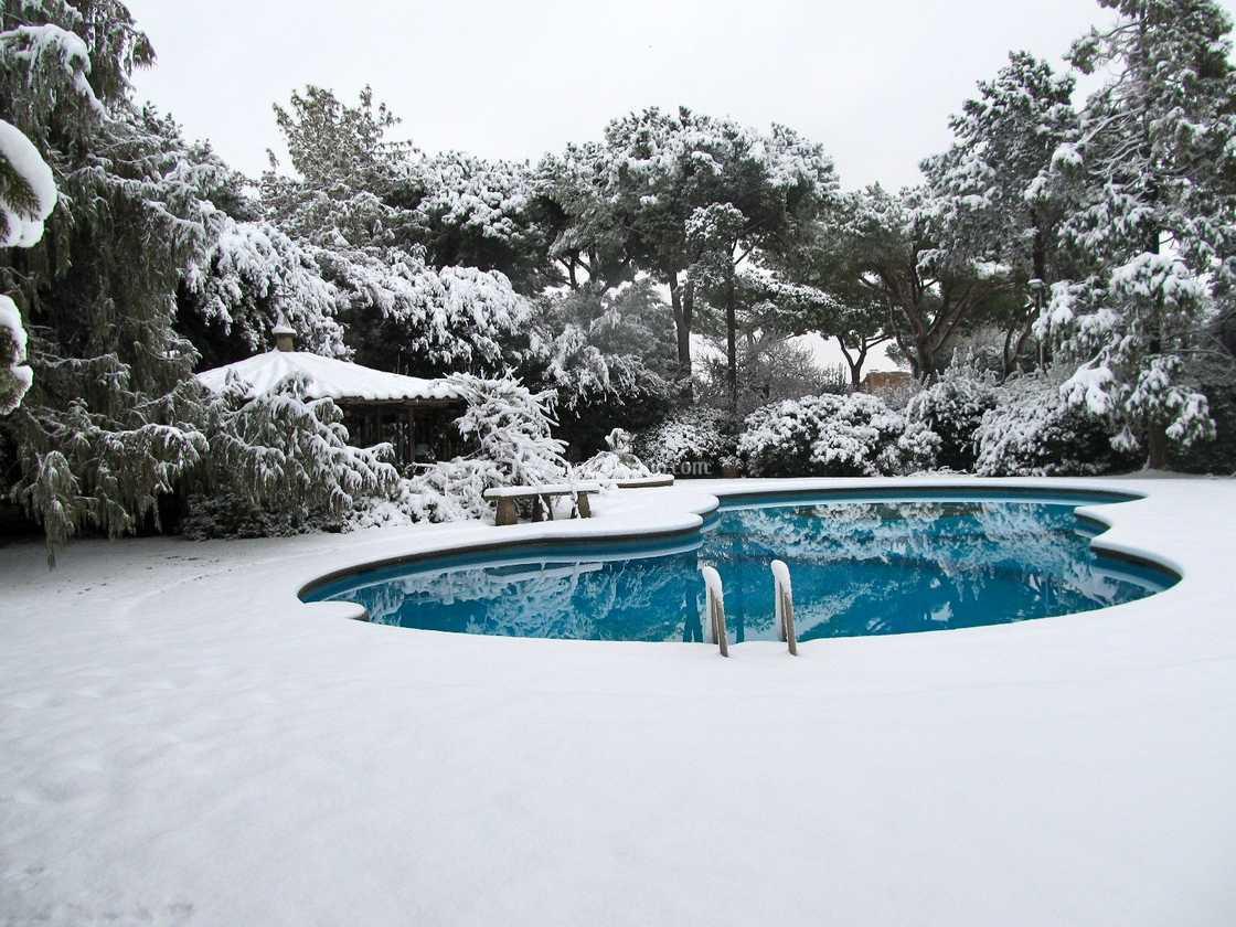 Il giardino d'inverno