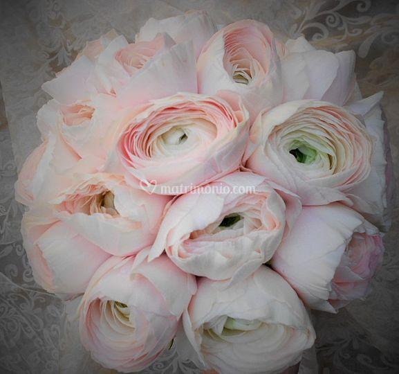 Bouquet - eleganza allo stato puro