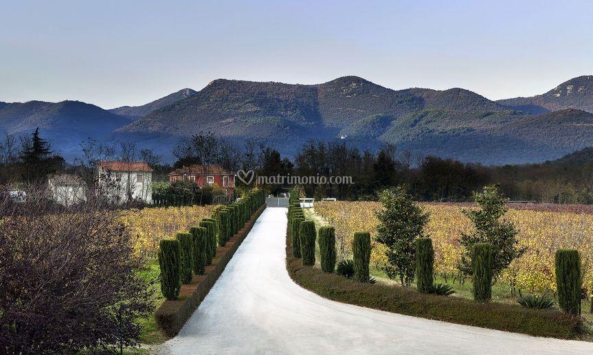 Villa paolina - vialone